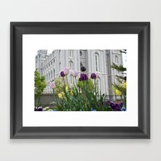Temple Flowers 2 Framed Art Print