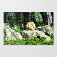 THE LION SLEEPS TODAY Canvas Print