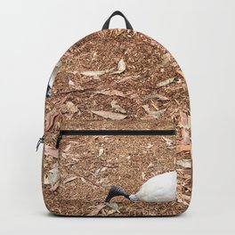 Ibis Bird Backpack