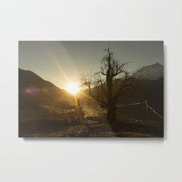 Himalayan tree Metal Print