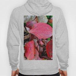 Autumnal leaves Hoody