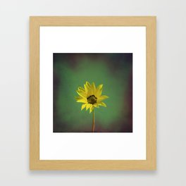 The yellow flower of my old friend Framed Art Print