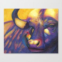 Wild Water buffalo Canvas Print
