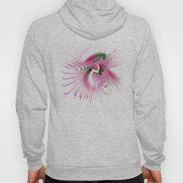 fractal design -53- Hoody
