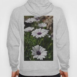 Margherite flovers Hoody