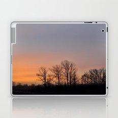 Bare Trees Laptop & iPad Skin