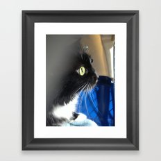 Butters the cat Framed Art Print