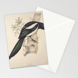 Magpie pica caudata11 Stationery Cards