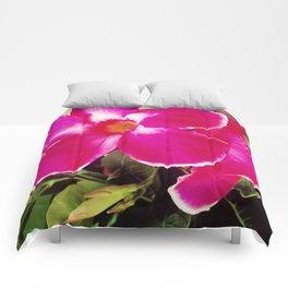 Tropical Pink Comforters