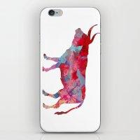 bull iPhone & iPod Skins featuring Bull by WatercolorGirlArt