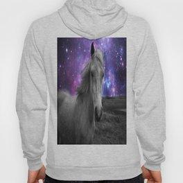 Horse Rides & Galaxy skies muted Hoody